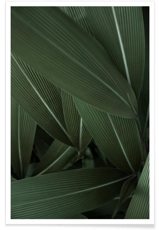 Arbres, Forêts, Feuilles & Plantes, Minimal Plants affiche