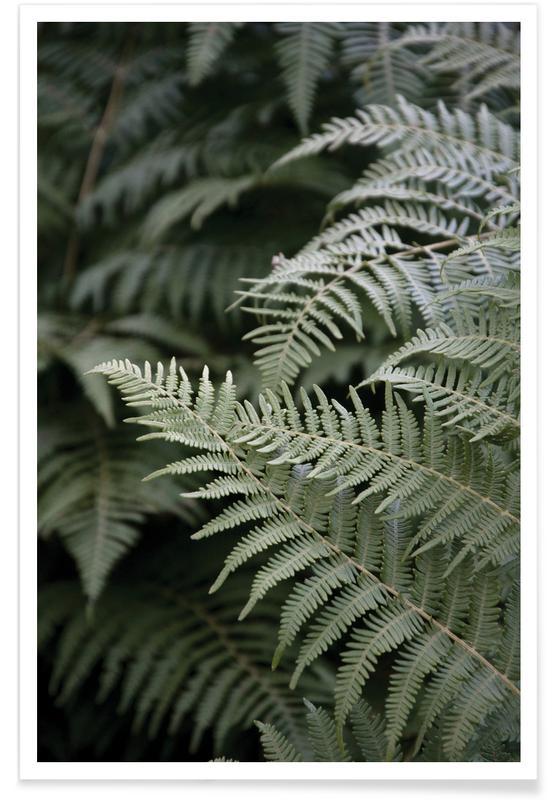 Feuilles & Plantes, Forest Mood affiche