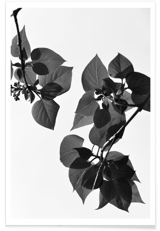 Leaves & Plants, Green is the Color of Life Poster