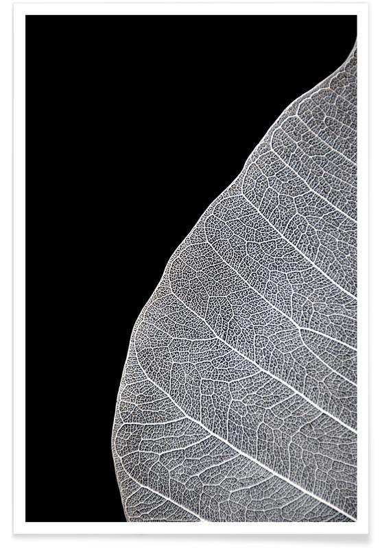Leaves & Plants, Veins of Life 1 - Black & White Poster