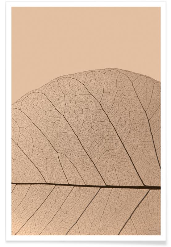 Leaves & Plants, Veins of Life 3 - Champagne Hues Poster