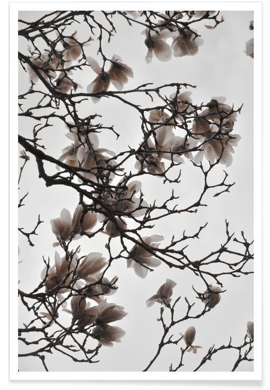 Feuilles & Plantes, Beige Sand Magnolia Dream affiche