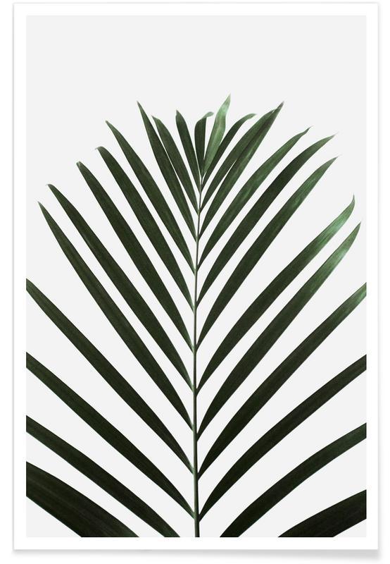 Bladeren en planten, Abstracte landschappen, Palmbomen, Minimal Palm Leaf poster