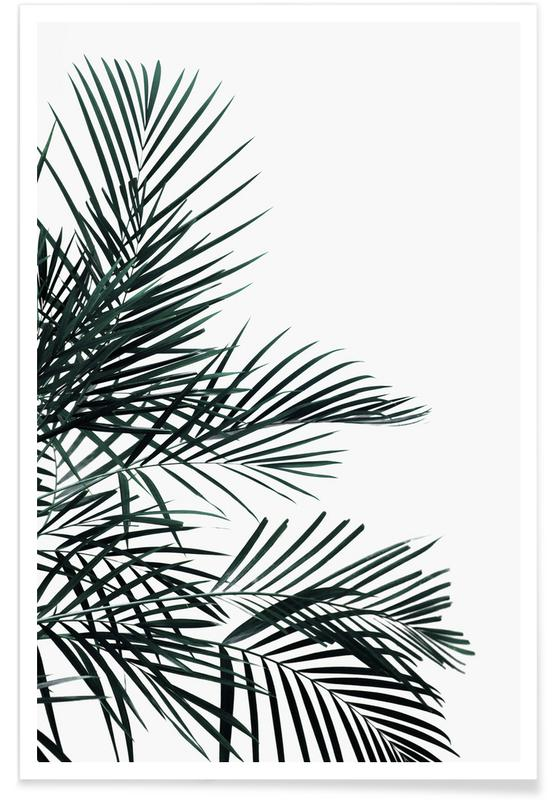Abstract Landscapes, Leaves & Plants, Palms, Lush Tropical Palms Poster