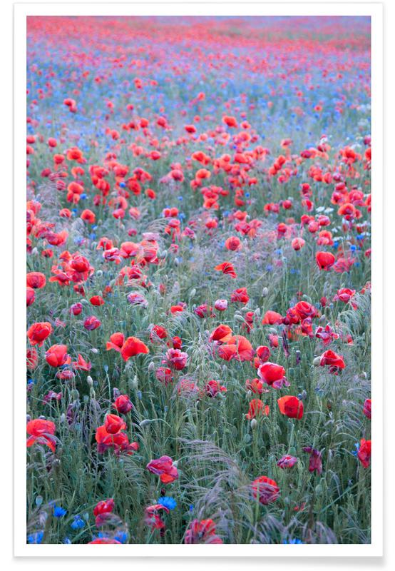 Klaprozen, Poppy Seed Heaven poster