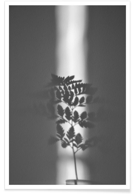 Ray Of Sunlight affiche