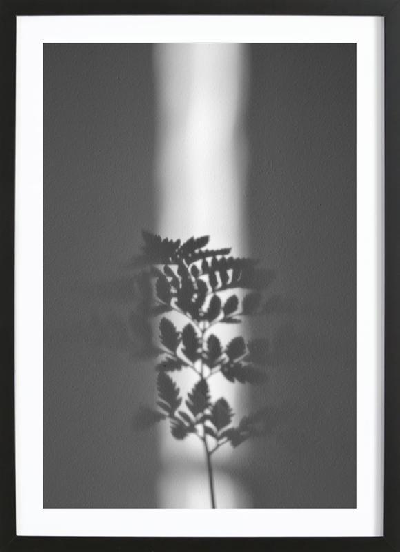 Ray Of Sunlight Framed Print