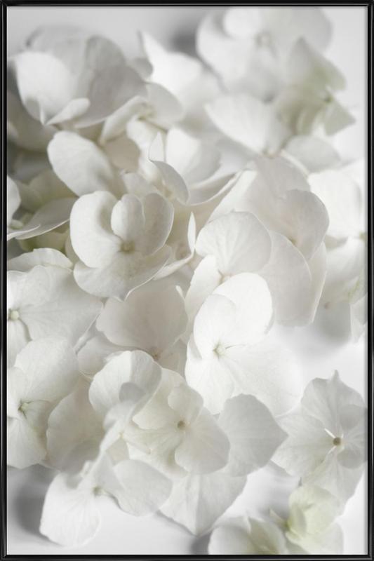 White Beauty Framed Poster