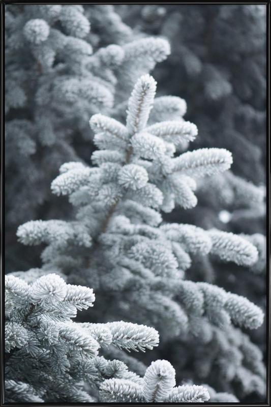 Winter Forest Framed Poster