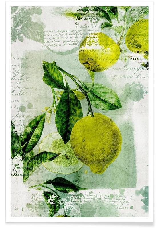 Zitronen, Botanic 1 -Poster