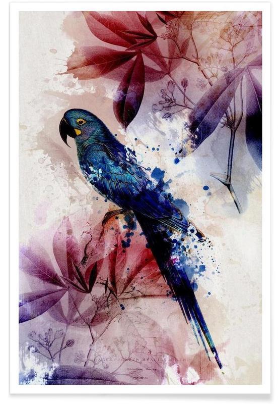 Botanic 2 poster
