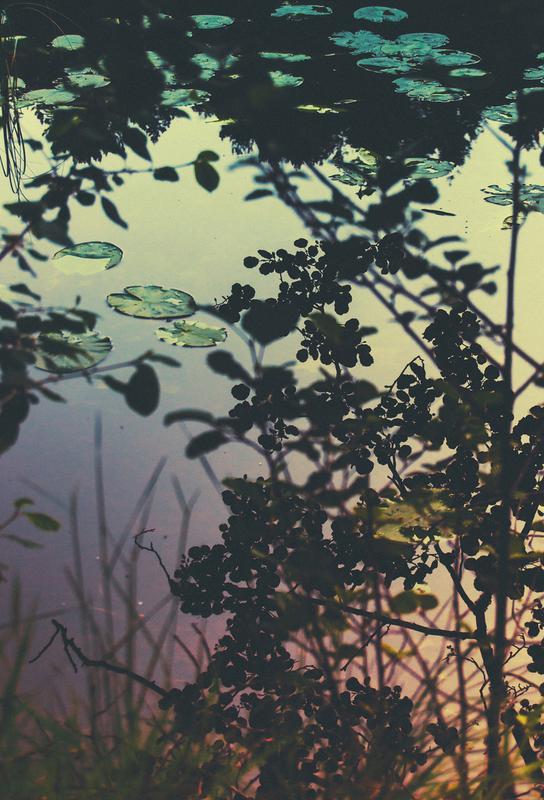 The Afternoon Lake alu dibond