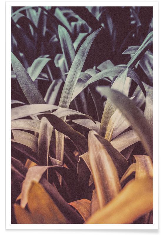 Blätter & Pflanzen, The Garden -Poster