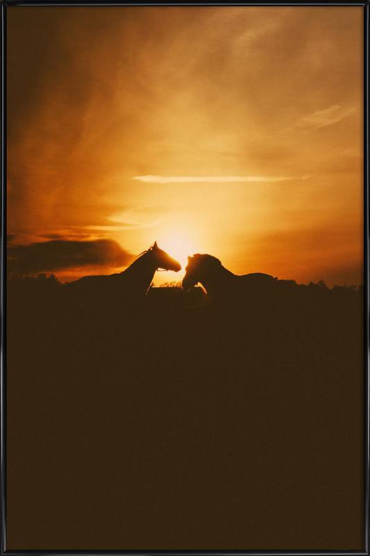The Horses Framed Poster