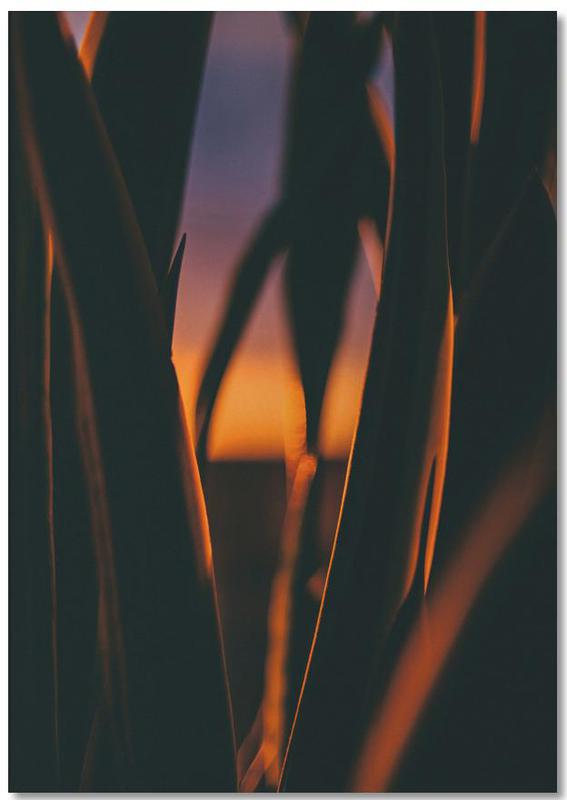 Blätter & Pflanzen, Sonnenuntergänge, The Bend -Notizblock