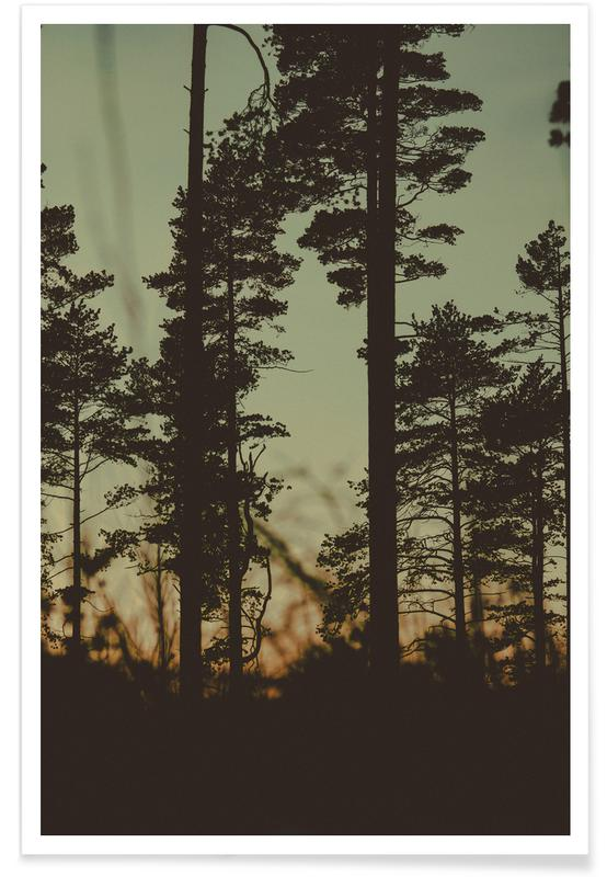 Forests, Trees, The Forest I Poster