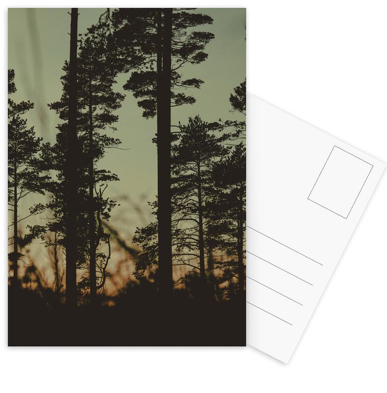 The Forest I Postcard Set