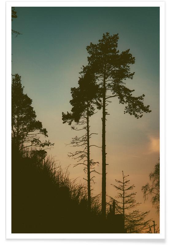 Wälder, Bäume, The Forest II -Poster