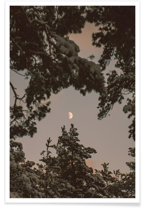 Forests, Trees, The Moon Poster