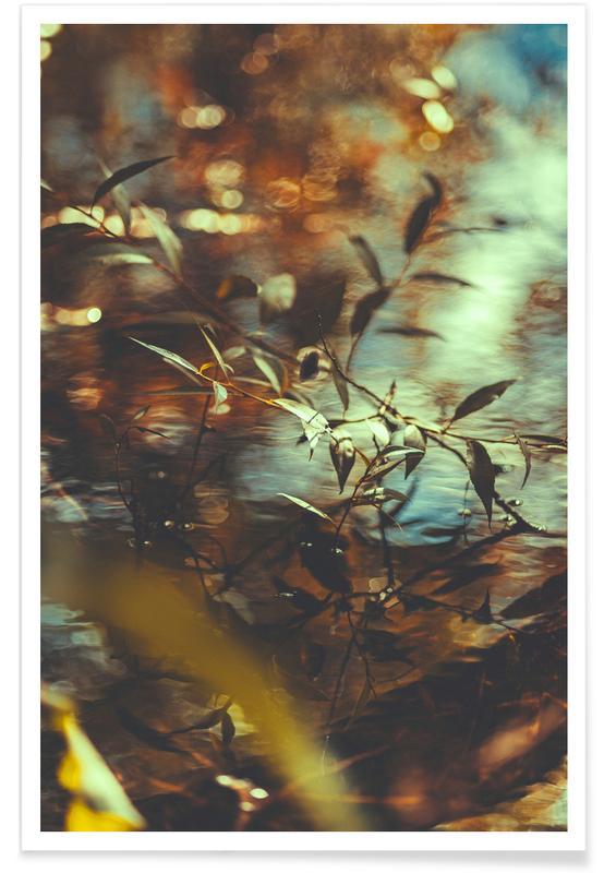 Blätter & Pflanzen, Chroma IV -Poster