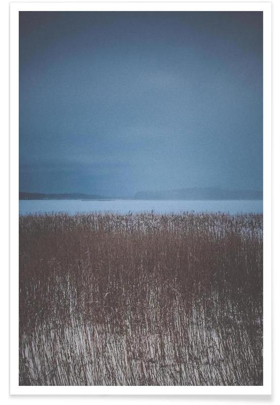 , The Reeds affiche