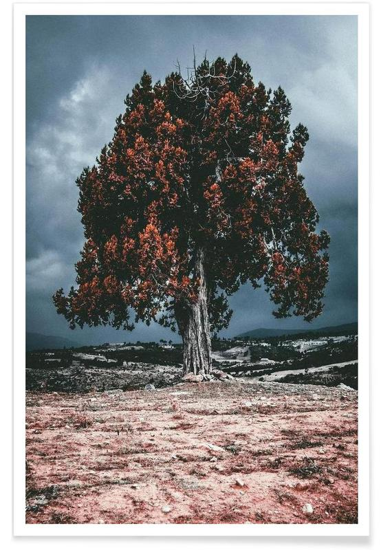 Arbres, The Red Giant Tree affiche