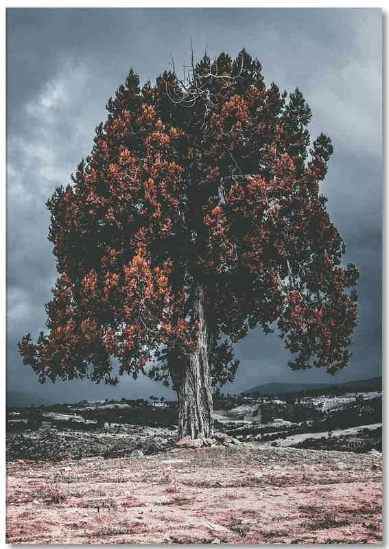 The Red Giant Tree Notepad
