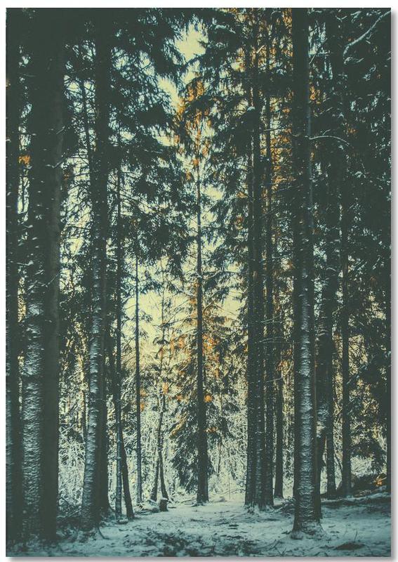 Wälder, The Pin -Notizblock