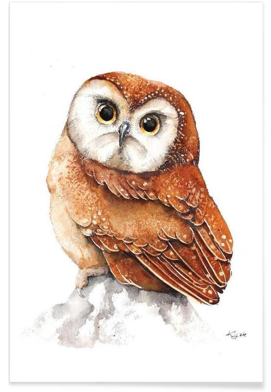 Owls, Pygmy Owl Poster