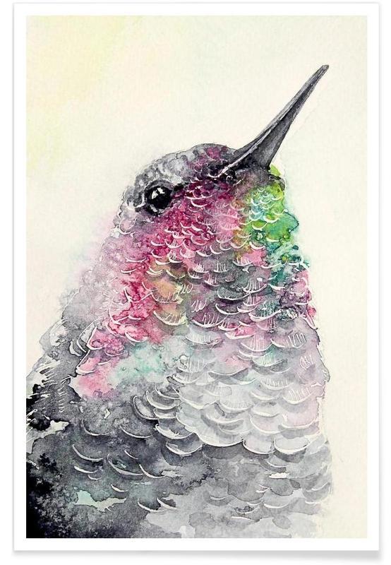 Kolibries, Hummingbird poster