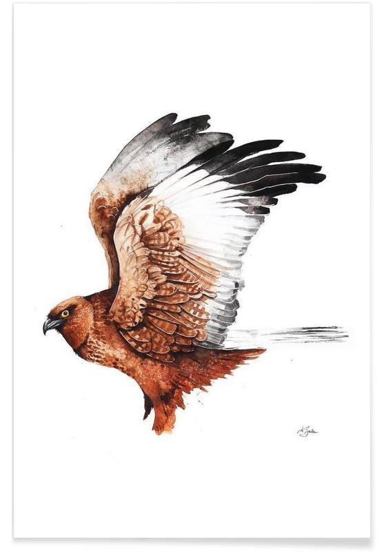Hawks, Hawk Poster