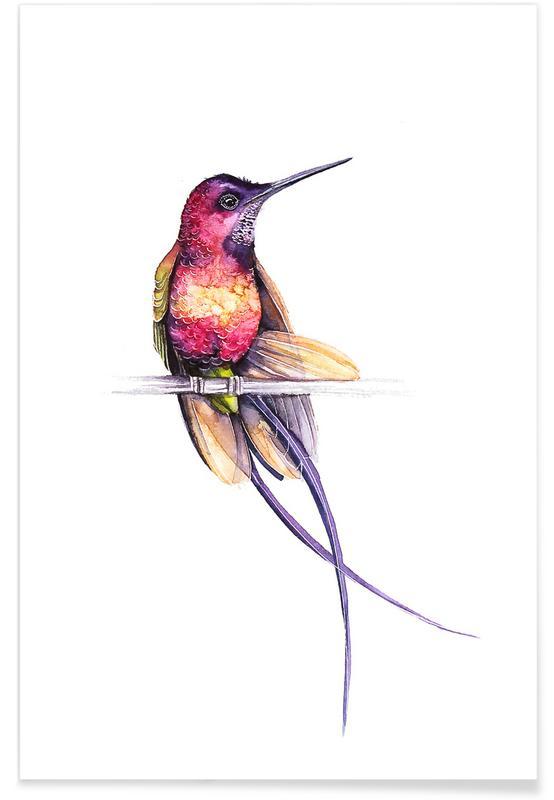 , Hummingbird -Poster