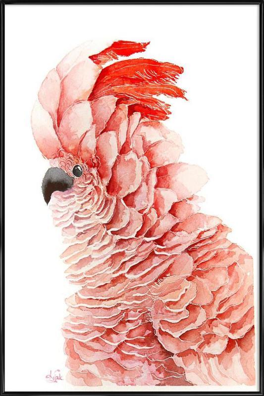 Pink parrot Framed Poster