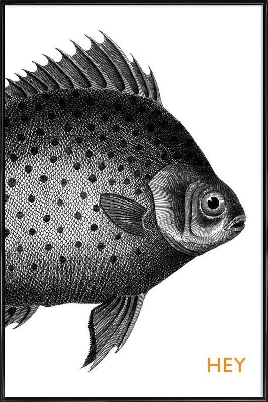 Hey Fish affiche encadrée