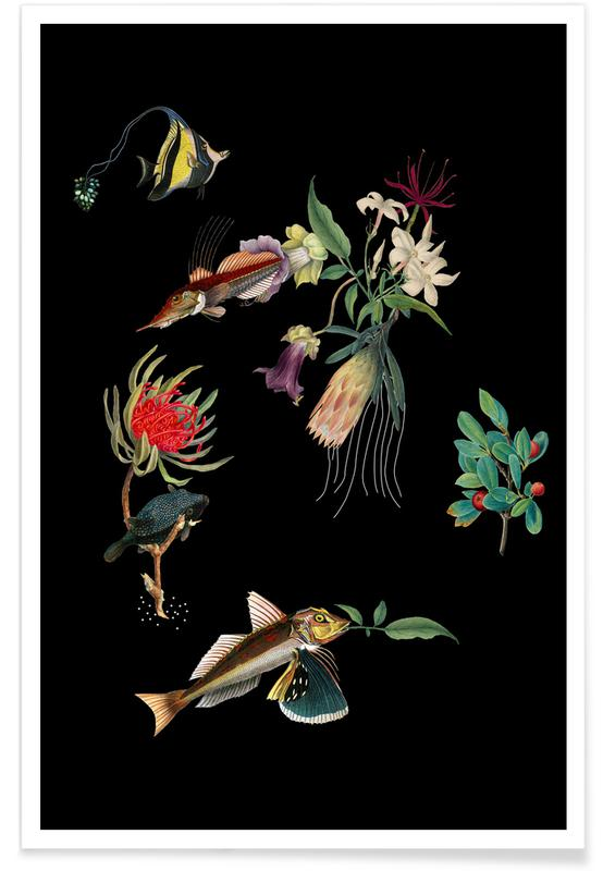 Moon, Ocean, Lake & Seascape, Butterflies, Skies & Clouds, Trees, Spaceships & Rockets, Fish, Movies, Forests, Abstract Landscapes, Bears, Black & White, Beaches, Mountains, Leaves & Plants, Flowerfish Poster