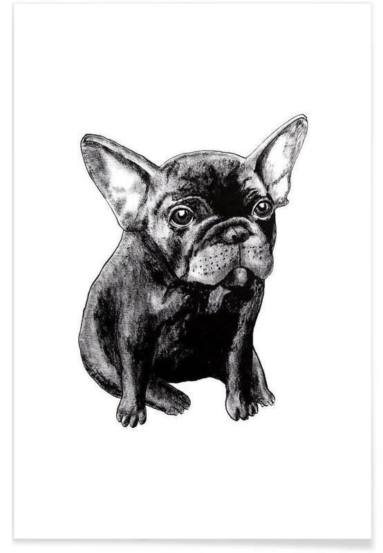 Chiens, Noir & blanc, Illustration de bébé bouledogue Français affiche
