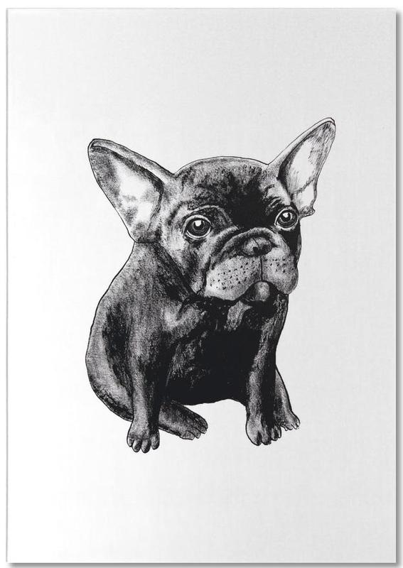 Chiens, Noir & blanc, French Bulldog bloc-notes