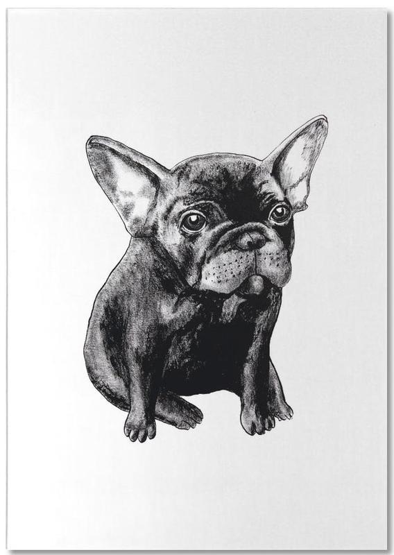 Dogs, Black & White, French Bulldog Notepad