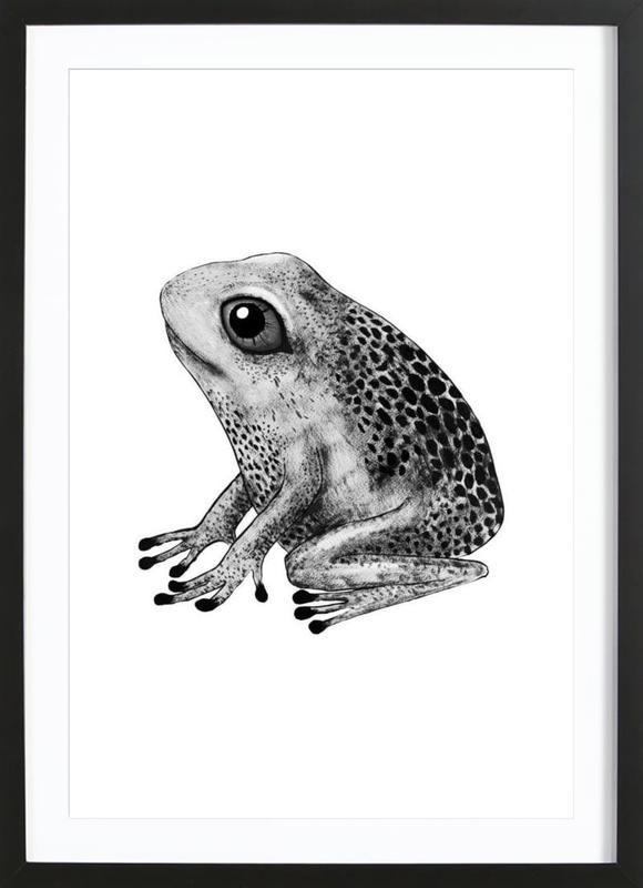 Frog -Bild mit Holzrahmen