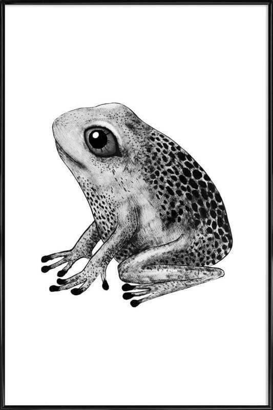 Frog -Bild mit Kunststoffrahmen