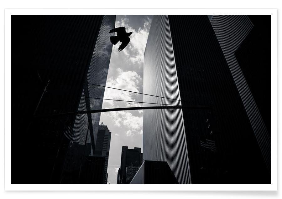Noir & blanc, Monuments et vues, Gratte-ciels, Bird in New York affiche