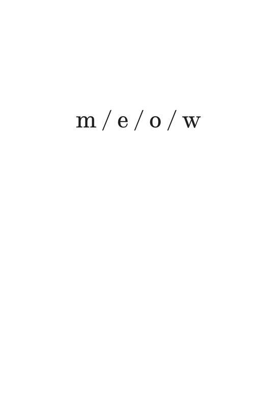 meow -Acrylglasbild