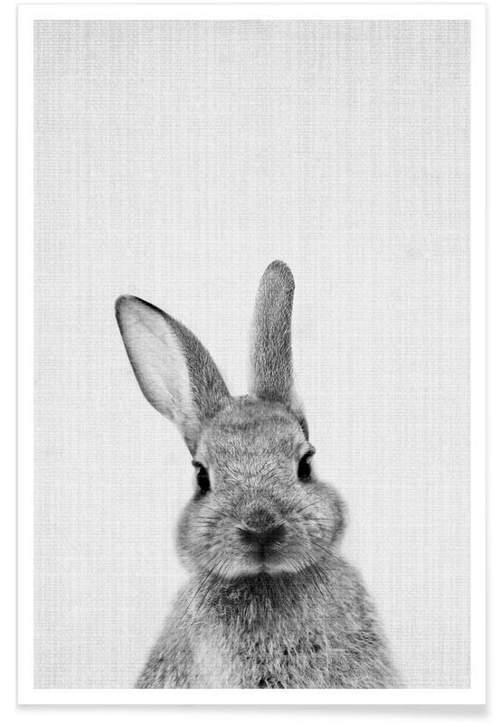 Lapins, Art pour enfants, Noir & blanc, Lapin - Photo en noir et blanc affiche