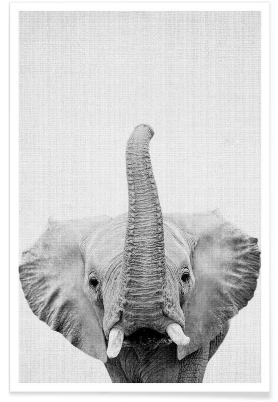 Art pour enfants, Noir & blanc, Éléphants, Eléphant - Photo en noir et blanc affiche