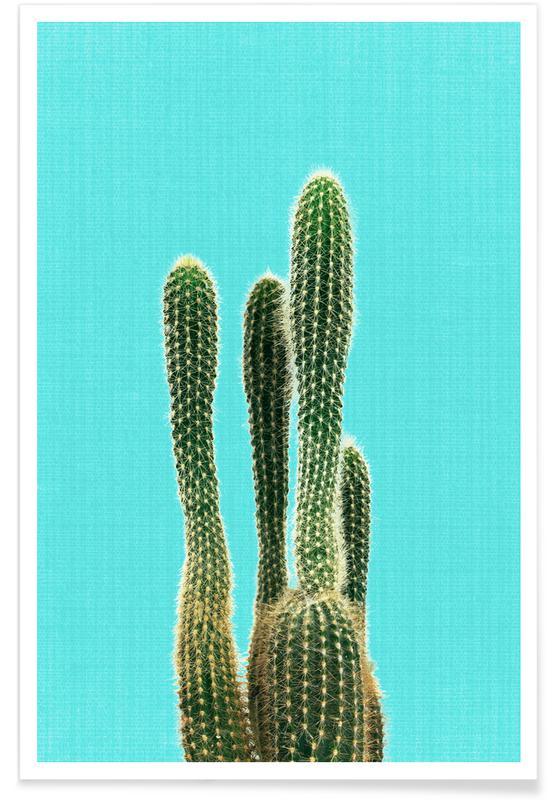 Cactus, Print 93 affiche