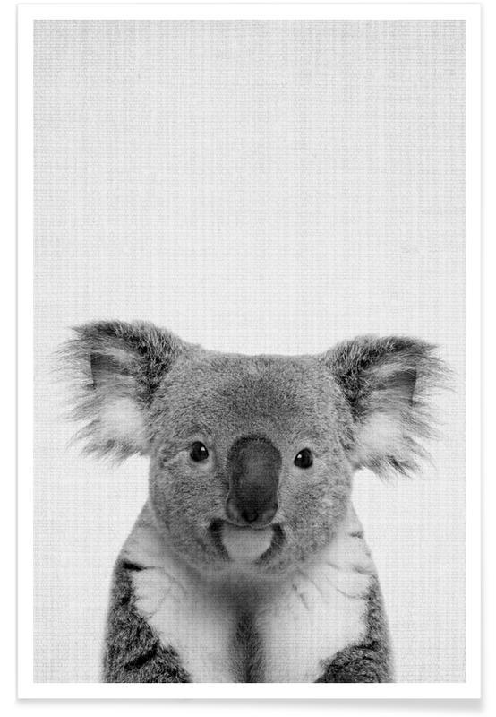 Art pour enfants, Koalas, Noir & blanc, Photo monochrome de Koala affiche
