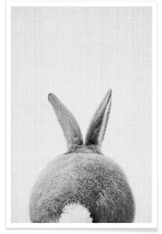 Børneværelse & kunst for børn, Sort & hvidt, Kaniner, Rabbit Tail Monochrome Photograph Plakat