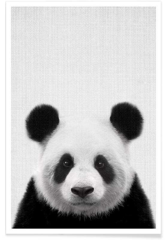 Art pour enfants, Noir & blanc, Pandas, Panda - Photo en noir et blanc affiche