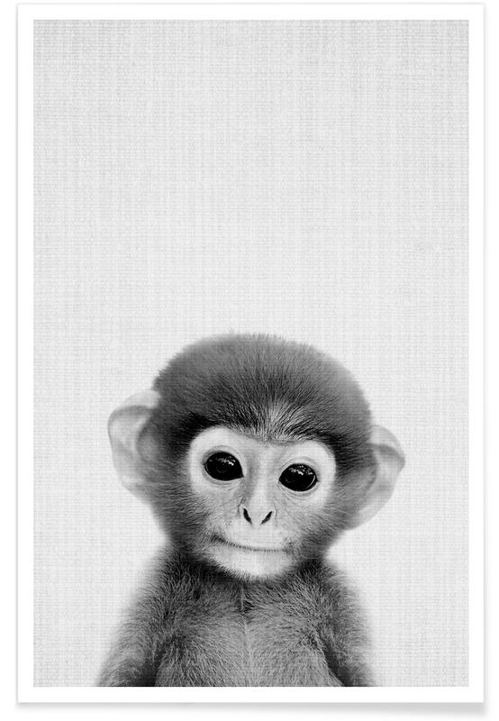 Aber, Børneværelse & kunst for børn, Sort & hvidt, Monkey Black & White Photograph Plakat