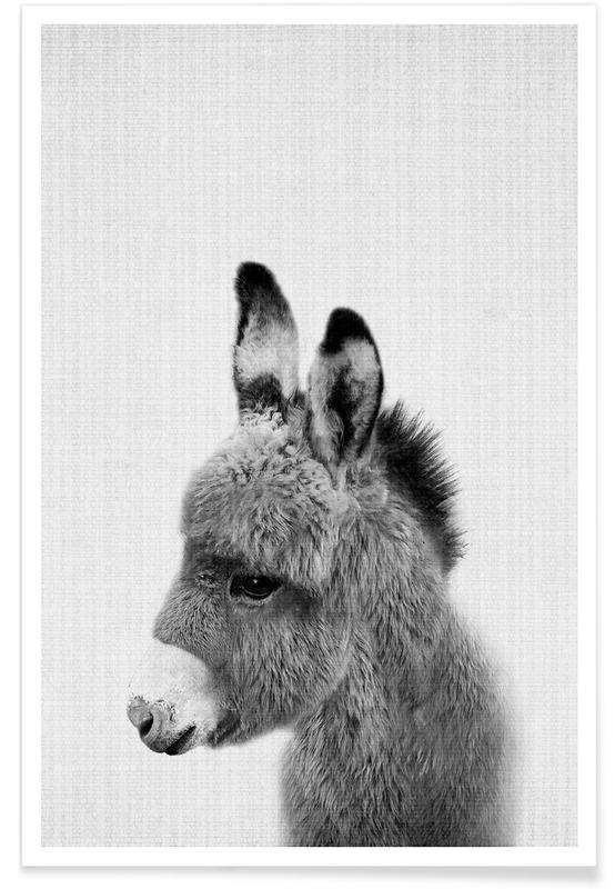 Sort & hvidt, Børneværelse & kunst for børn, Donkey Black & White Photograph Plakat